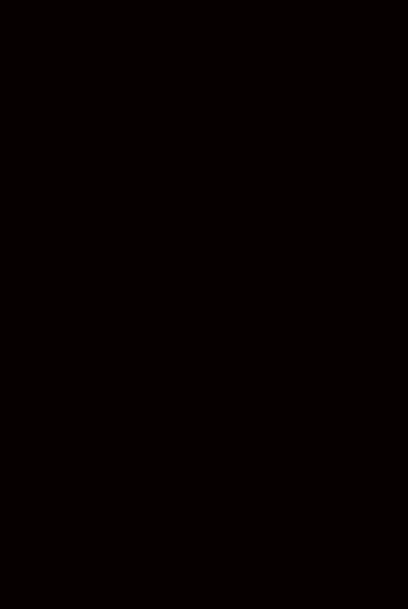 W-3200 BL